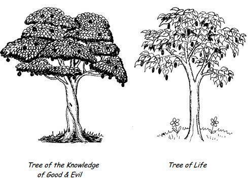 alvin boyd kuhn the tree of knowledge pdf